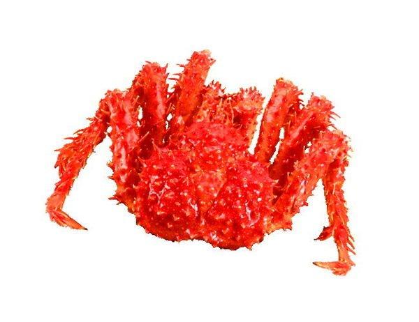 【萬象極品】帝王蟹/約1.4kg以上/隻~蟹肉鮮甜滋味讓人吮指回味 偶爾犒賞一下自己