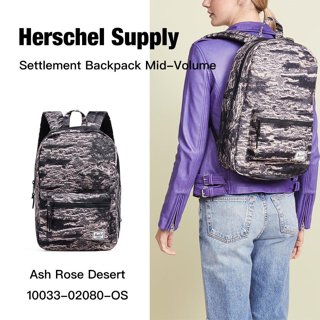 Herschel Settlement Mid 中型 金屬拉鍊 後背包 Ash Rose Desert
