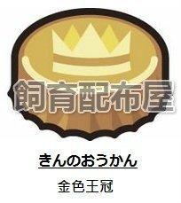 【飼育配布屋】太陽 月亮 配布 道具 金色 王冠 皇冠  神奇寶貝 3DS 精靈 寶可夢 日 月 皮卡丘 きんのおうかん