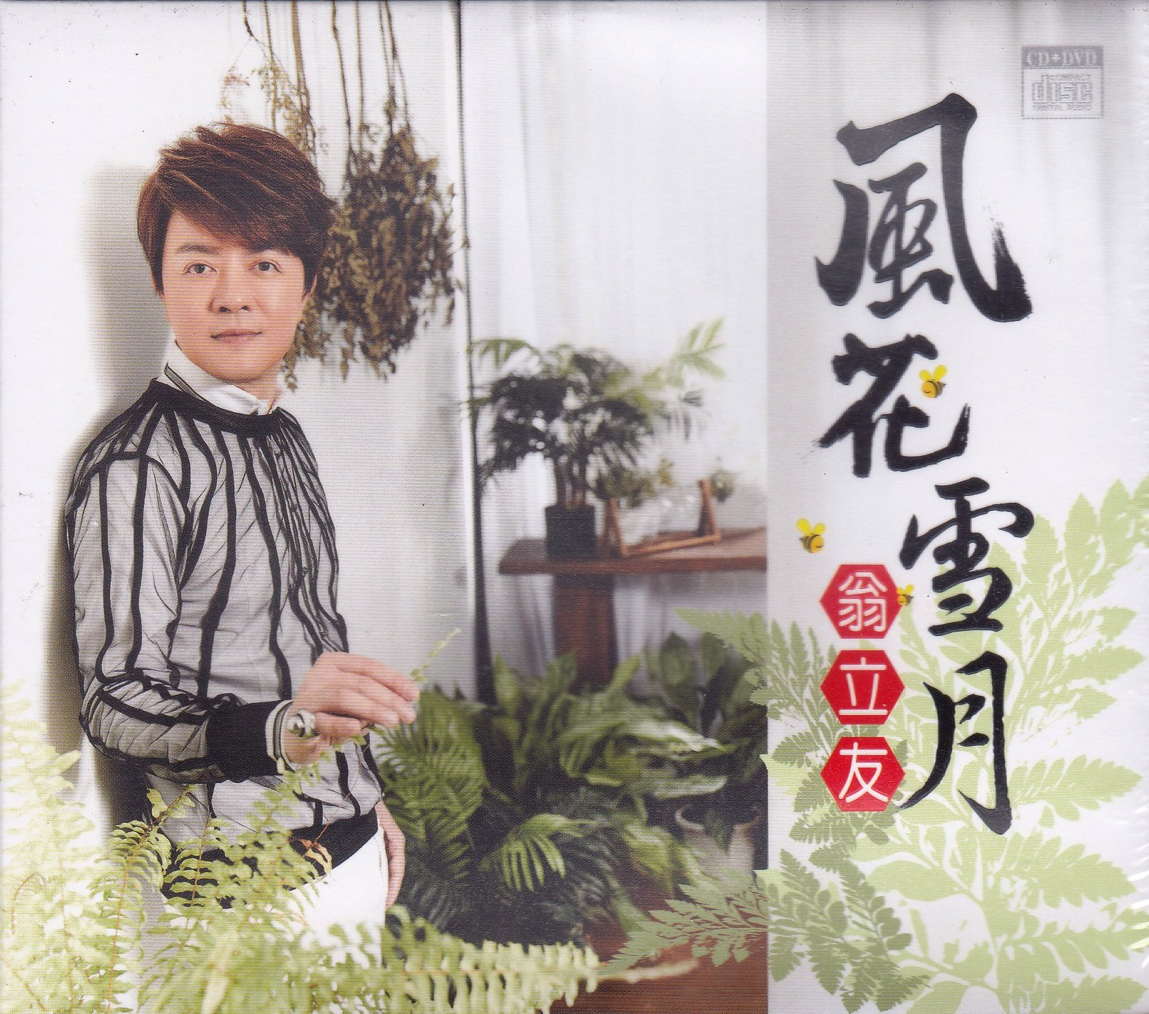 豪記 翁立友 風花雪月 CD+DVD 全新 金家好媳婦 片尾曲 謝金晶 許芷芸