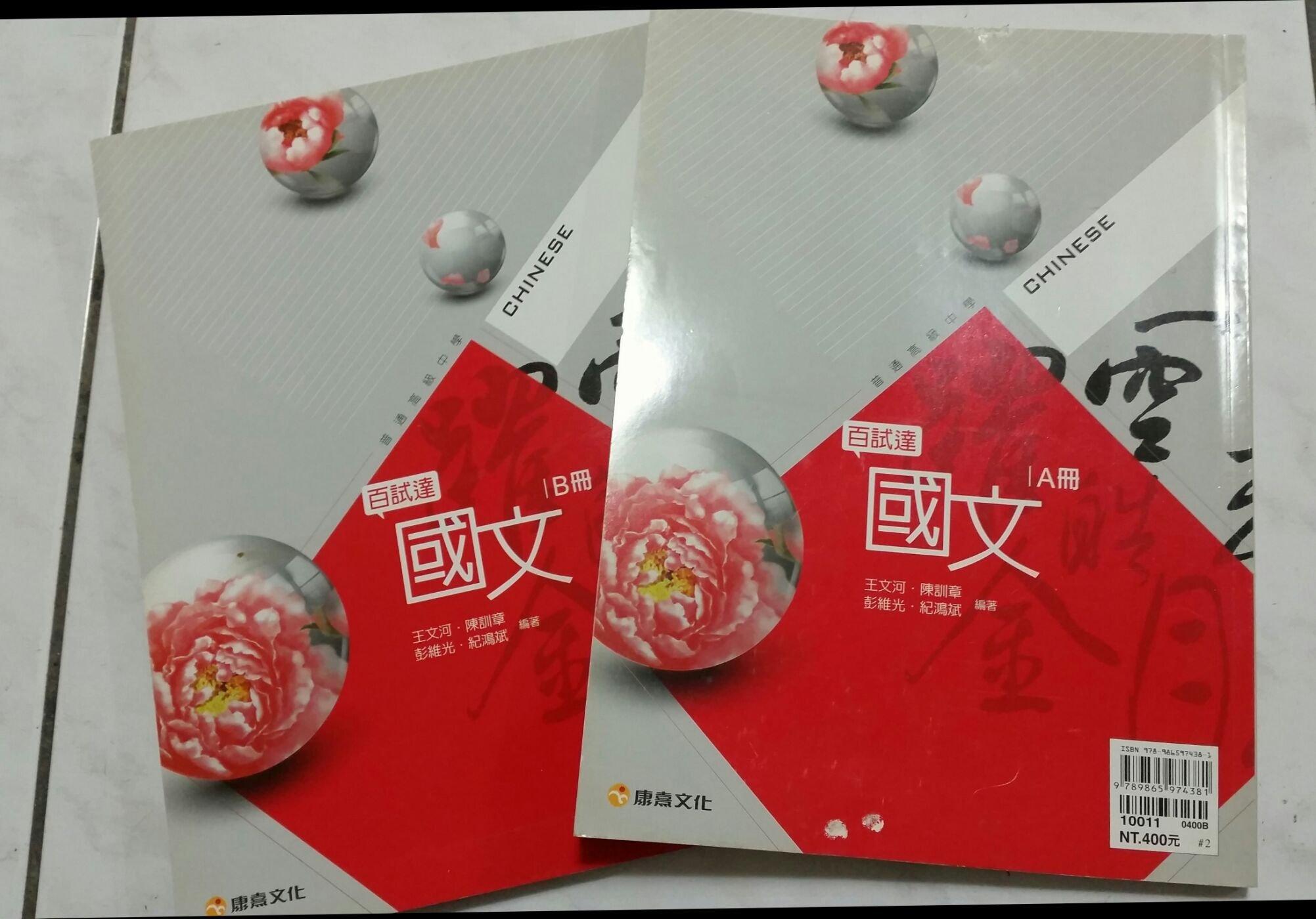 九成新,國文科 透視指考試題 大學指考國文科參考書 A.B兩冊