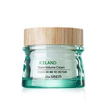 【韓Lin連線代購】韓國 THE SAEM  - 冰島礦物補水保濕霜(油性肌) 80ml