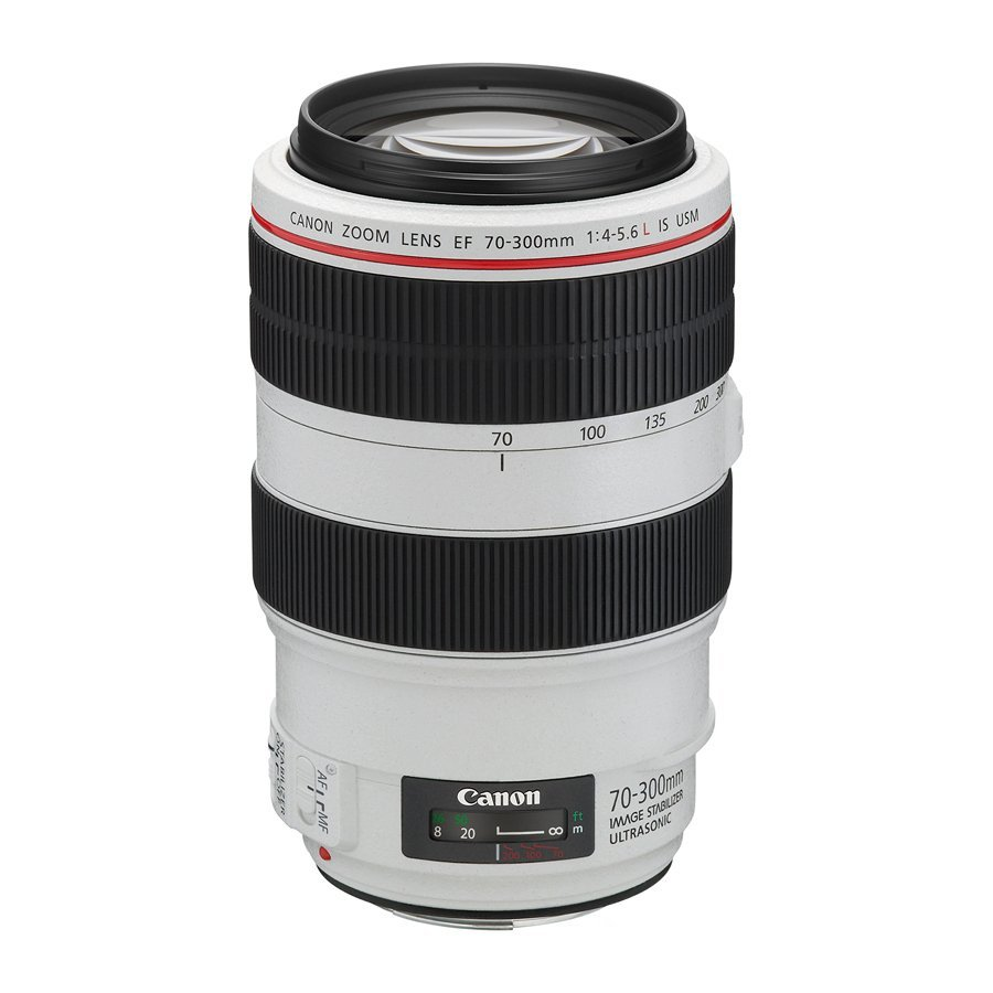 九晴天  租鏡頭 租相機 出租~Canon EF 70-300mm F4-5.6L IS USM