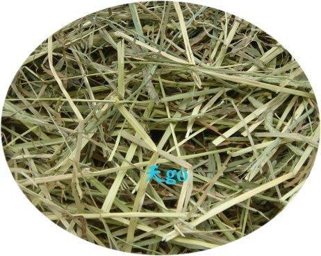 天go 牧草:《不分裝》陽光提摩西(TS)1kg/1包,草色青黃色相雜,超取4包運費40元
