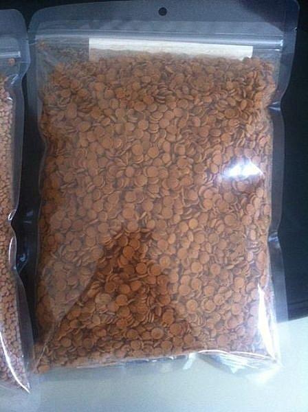 【PRO水族旗艦】 外銷 底棲肉食 飼料(魟魚 恐龍也會吃喔)1kg 更勝高夠力
