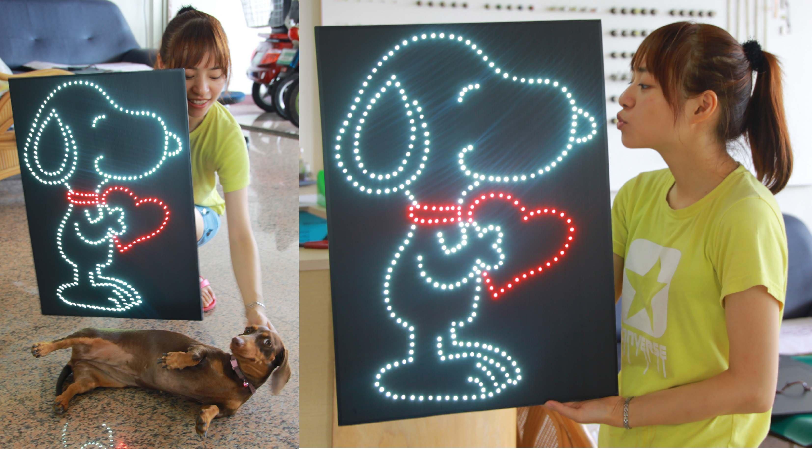 彩光LED燈牌 燈板 看板 加油板 粉絲板 演唱會 簽唱會 後援會 追星 蔡閔祐 林俊傑 郭書搖