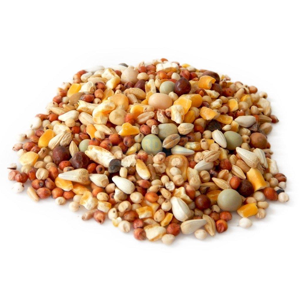 鴿子飼料600克/綜合雜糧飼料/倉鼠飼料~鴿子,斑鴆,斑鴆,麻雀,鸚鵡等野外鳥類和零嘴