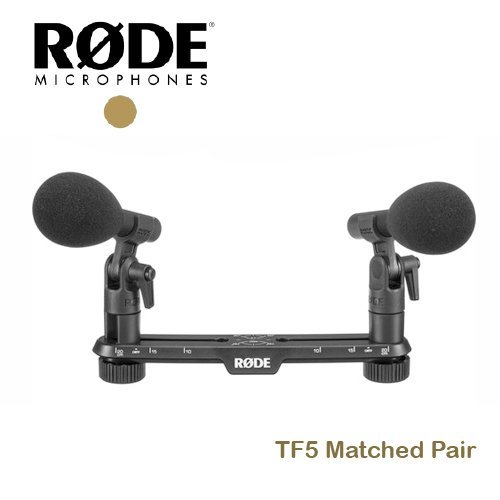 【EC數位】RODE TF5 Matched Pair 槍型 麥克風 電容式 收音 TF5MP 心形指向性 清晰度 錄音