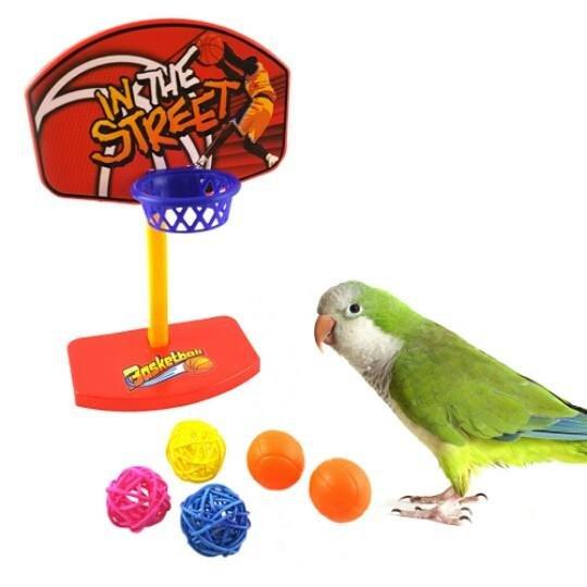 可愛鸚鵡玩具系列~鸚鵡打籃球~投籃機 (籃球架顏色和送的球 出貨唷)