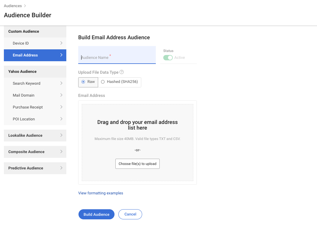build-email-address-audience-page