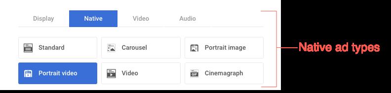 native-portrait-video-ad-type