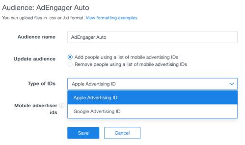 custom-audience-id-type-apple