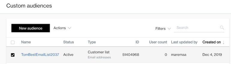 new custom audience email type