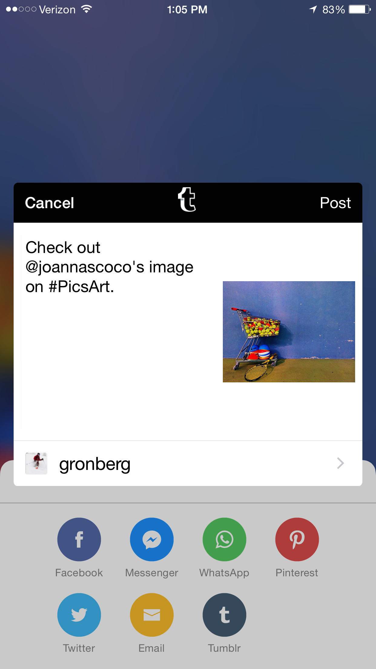 Tumblr In-App Sharing