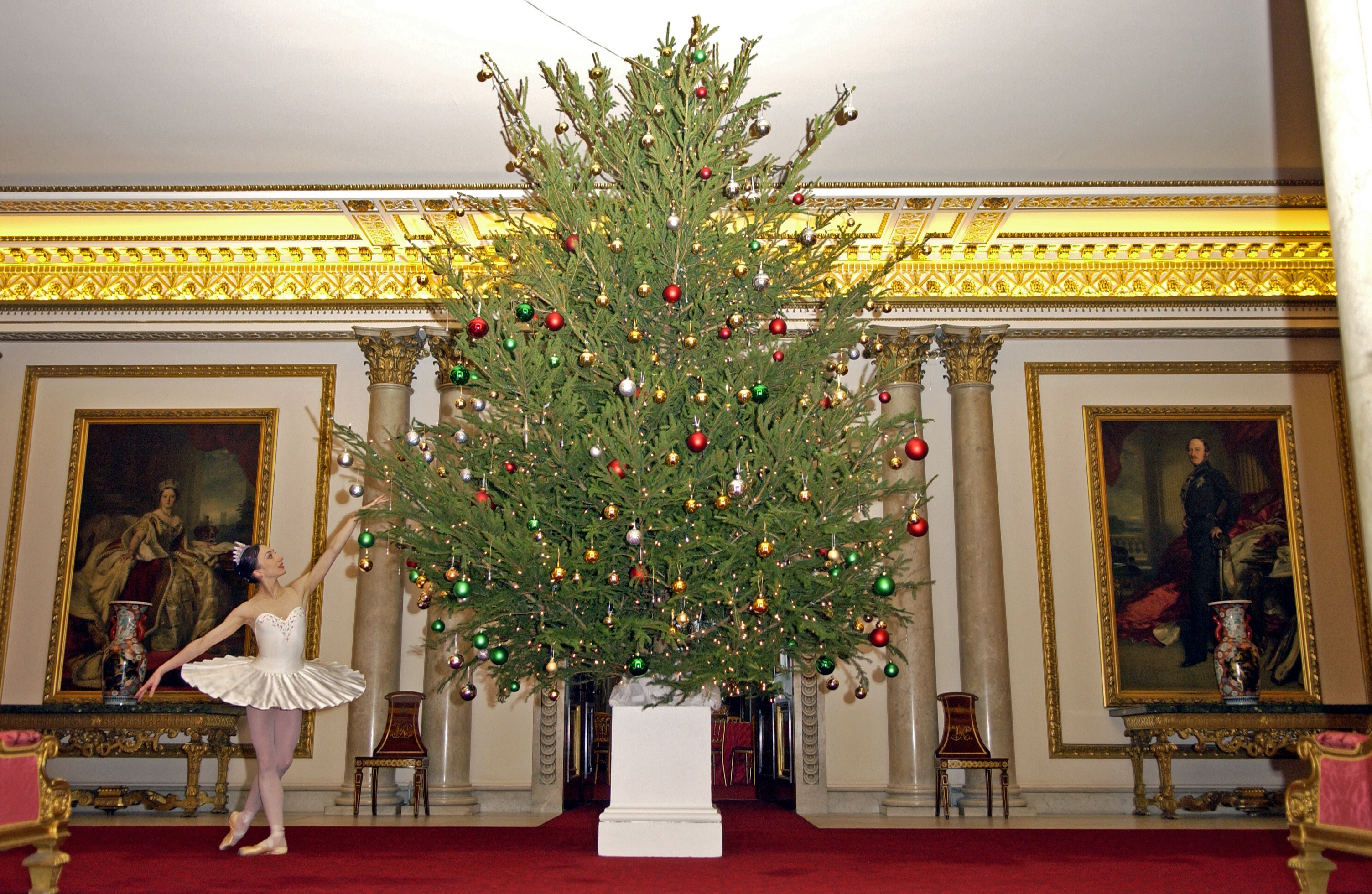LONDON, UNITED KINGDOM - DECEMBER 14:  A Dancer From The English National Ballet, Dressed In Costume, Stands In Front Of A Christmas Tree At Buckingham Palace Whilst Attending A Christmas Tea  (Photo by Tim Graham Photo Library via Getty Images)