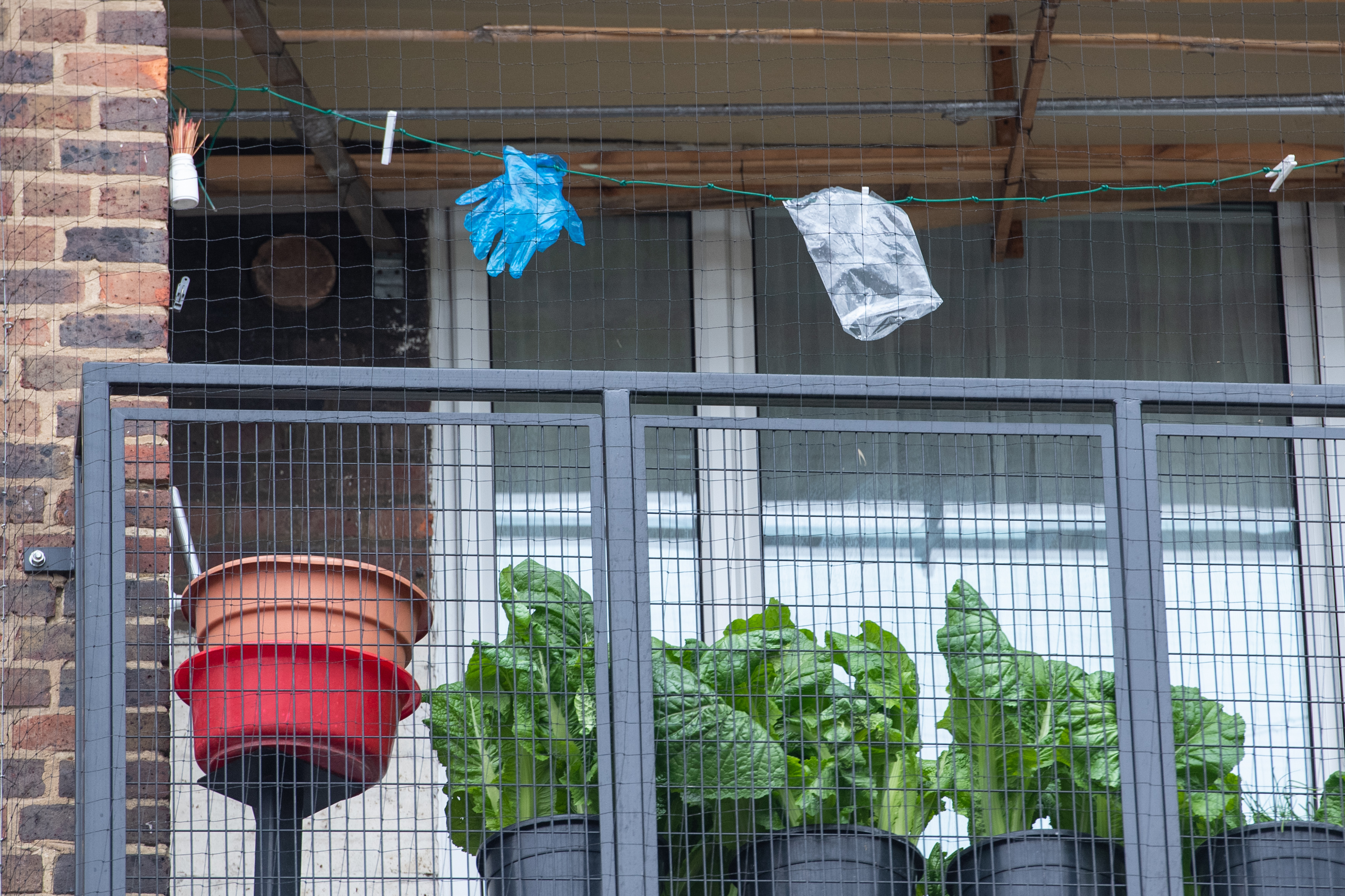 Disposable gloves pegged on a washing line in south London, as the UK continues in lockdown to help curb the spread of coronavirus.