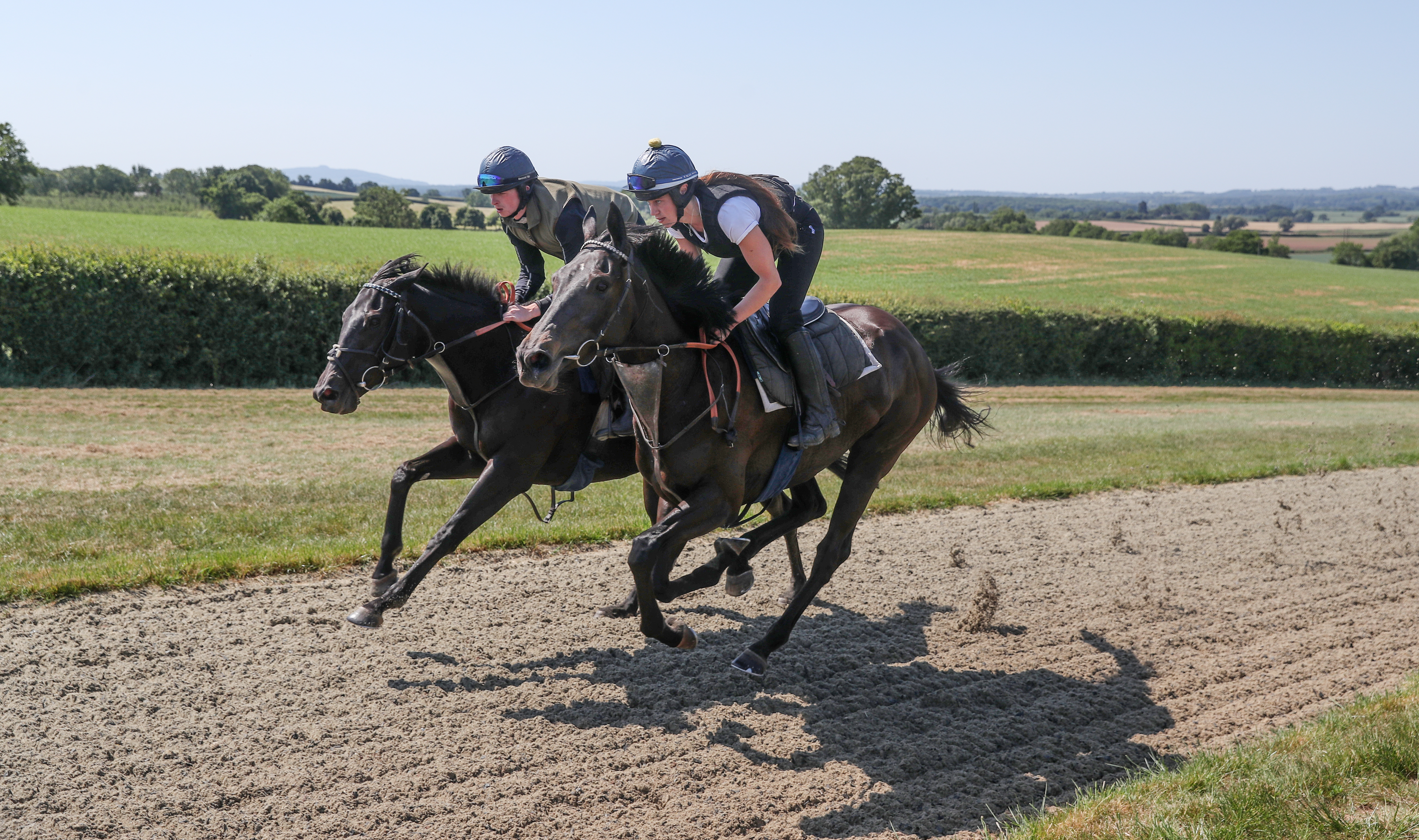 Horses from Ed de Giles stables on the gallops at his yard in Little Marcle, Herefordshire .