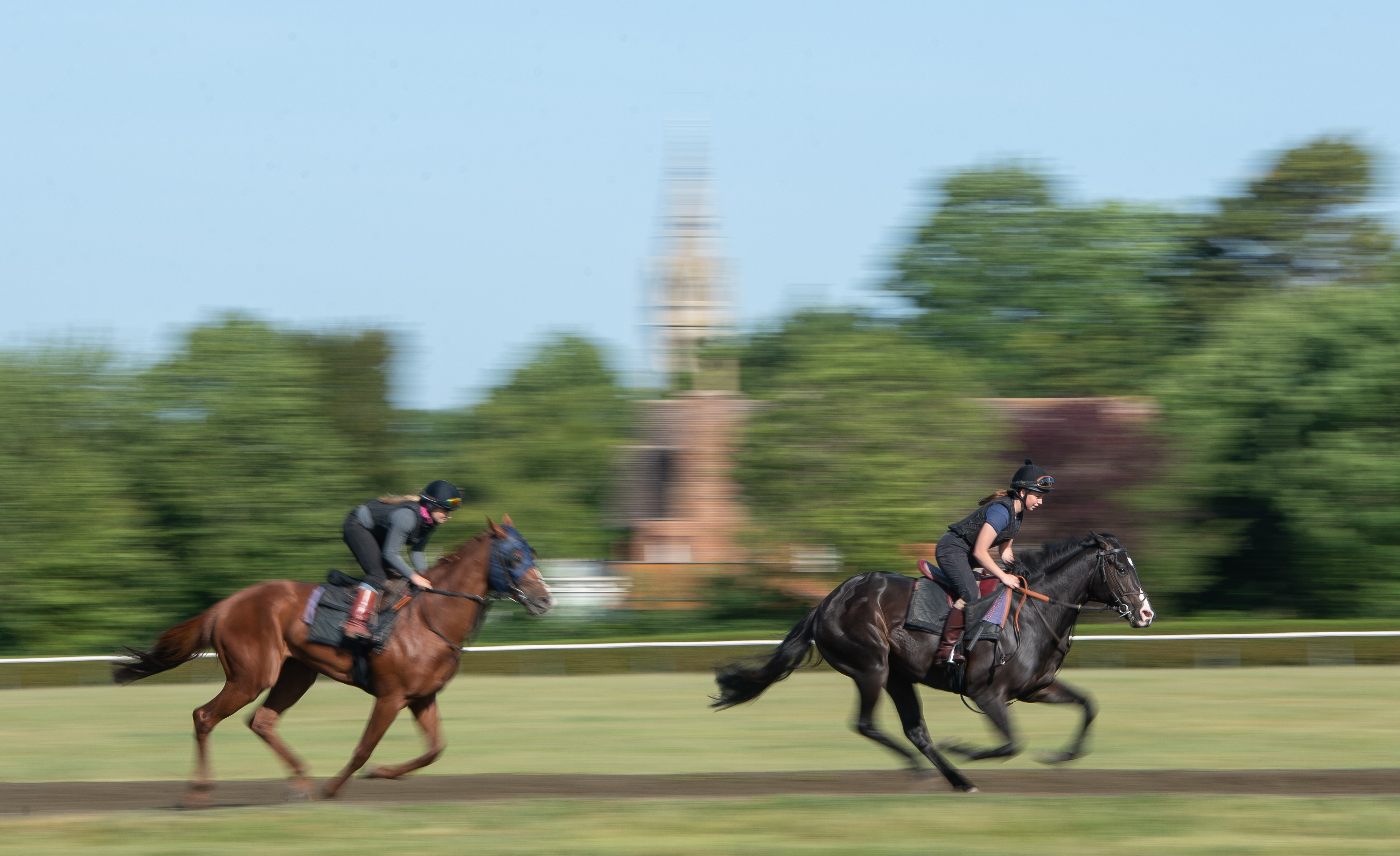 Racehorses on the gallops at Newmarket. (Photo by Joe Giddens/PA Images via Getty Images)