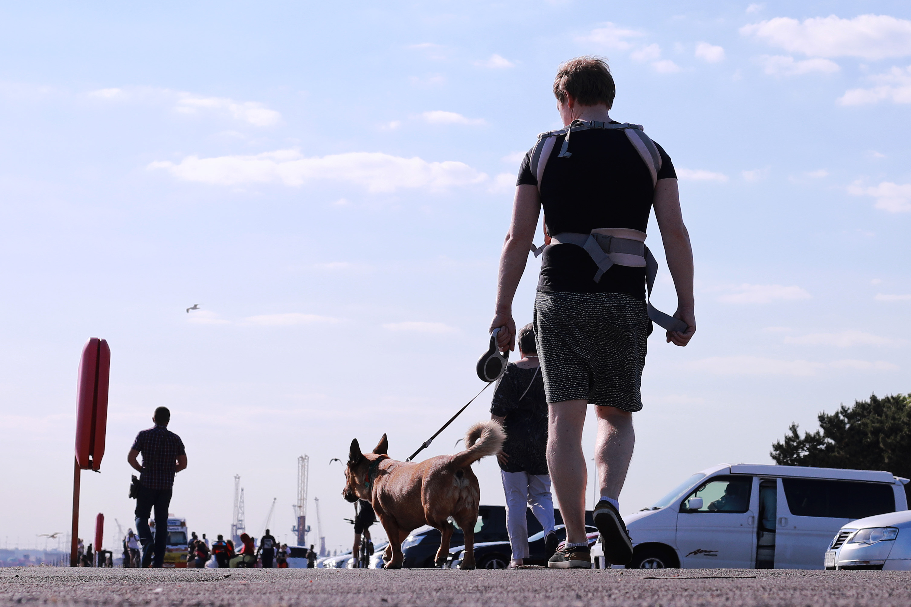 A member of the public takes a socially distanced walk with a dog in Southampton as lockdown restrictions are reduced in England during the ongoing coronavirus pandemic