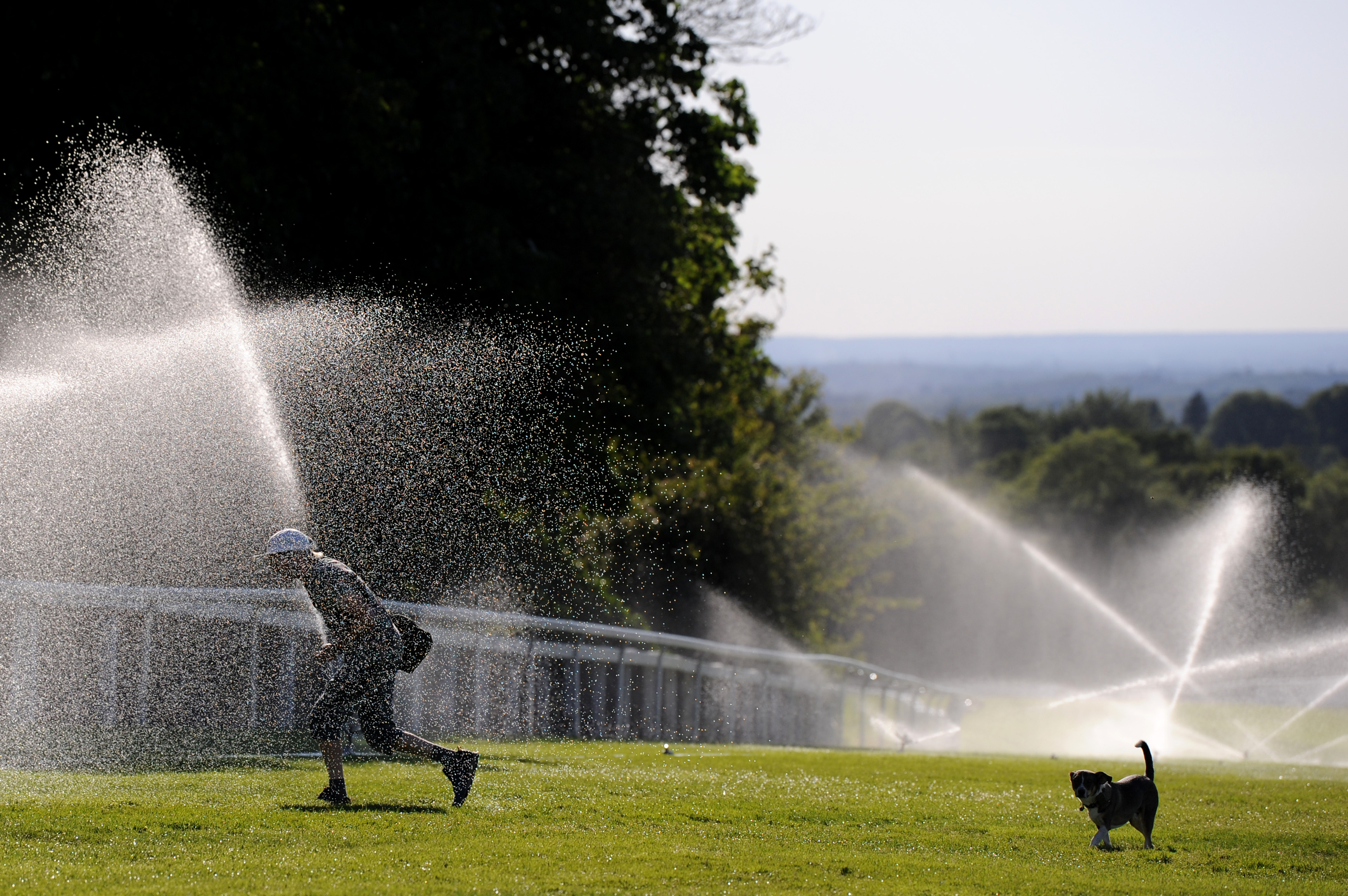 EPSOM, ENGLAND - JUNE 02: A person and a dog walk past sprinklers as they cross the course at Epsom Downs Racecourse on June 02, 2020 in Epsom, England. The British government further relaxed Covid-19 quarantine measures in England this week, allowing groups of six people from different households to meet in parks and gardens, subject to social distancing rules. Many schools also reopened and vulnerable people who are shielding in their homes are allowed to go outside again. (Photo by Alex Burstow/Getty Images)