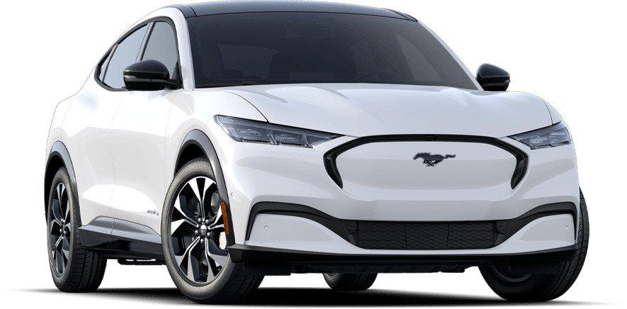 Mustang image
