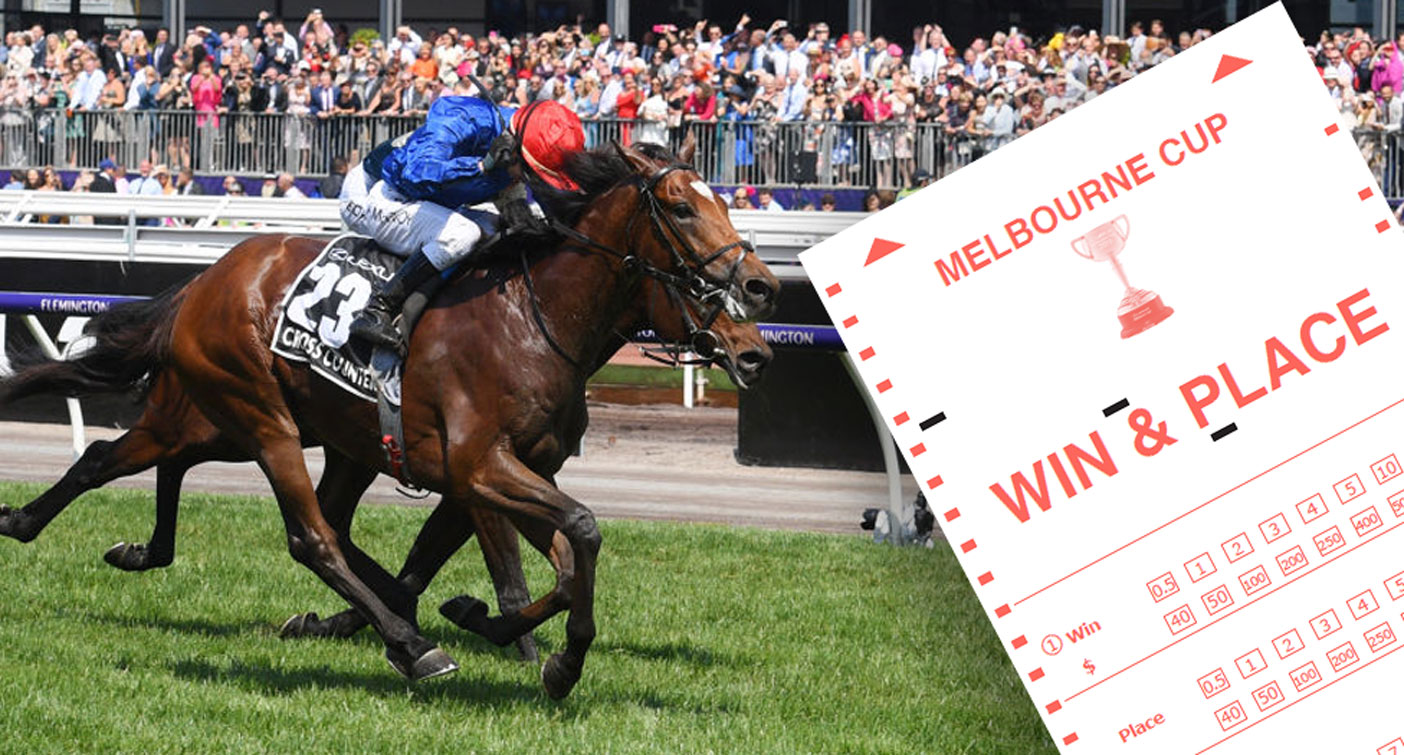How to bet on melbourne cup racing post racecards betting sites