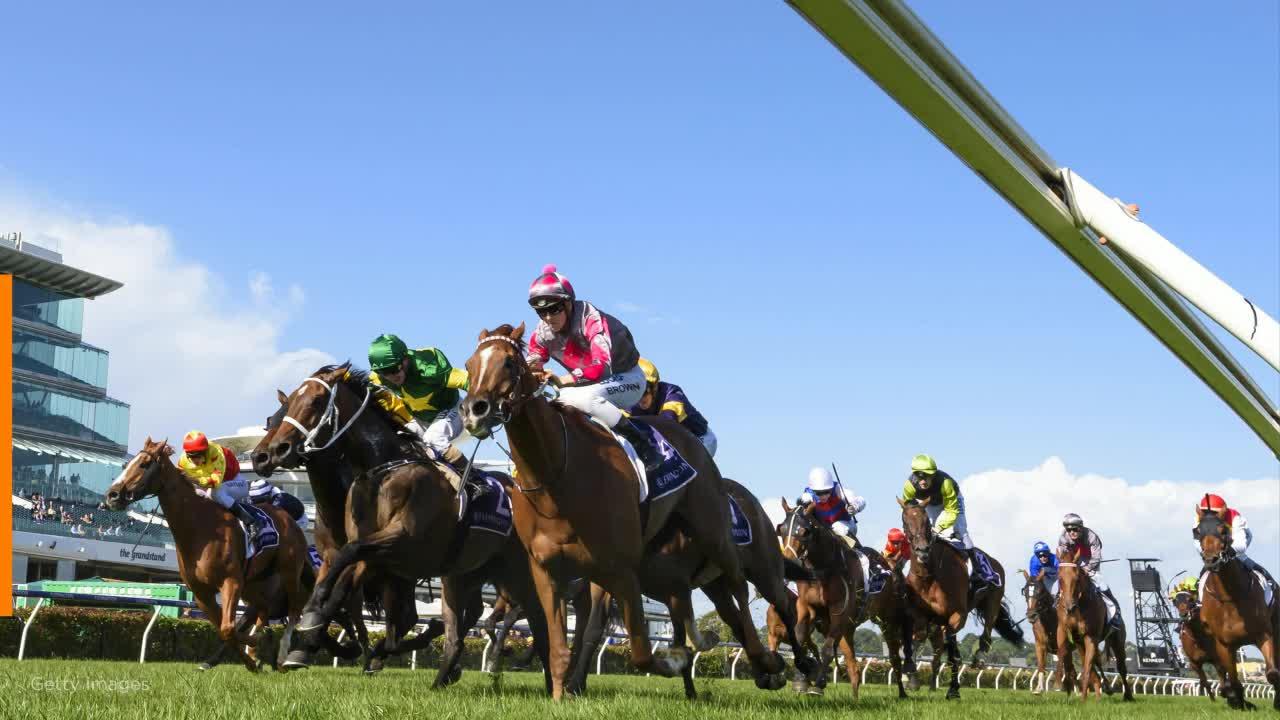 Horse racing betting systems uk yahoo janet jackson tribute to michael jackson on bet awards