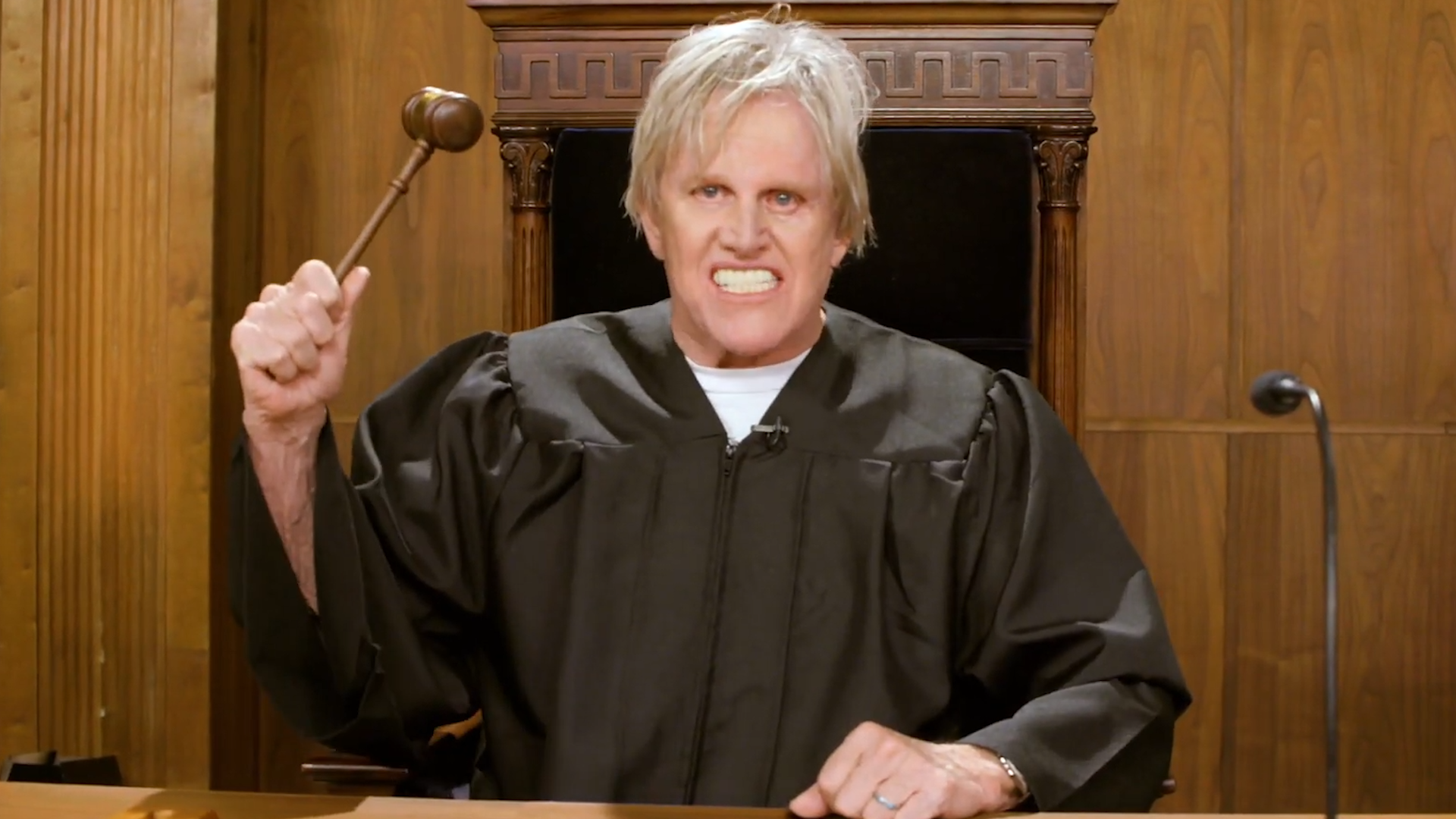 Gary Busey is a pet judge, Sofia Vergara joins 'AGT' and more of this  week's best in pop culture