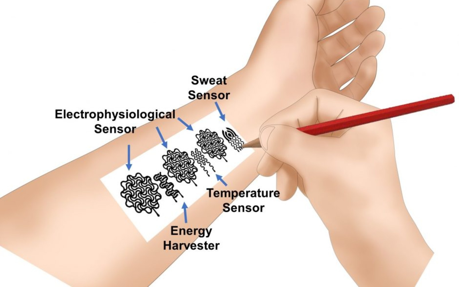 Researchers made a medical wearable using a pencil and paper