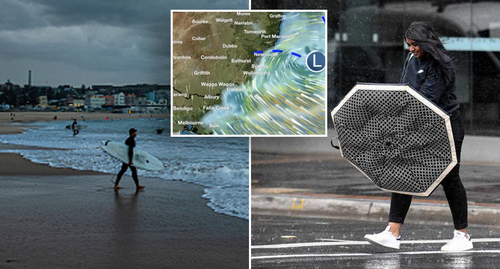'Thrashing down': Severe weather warning in place as NSW hit with wild conditions