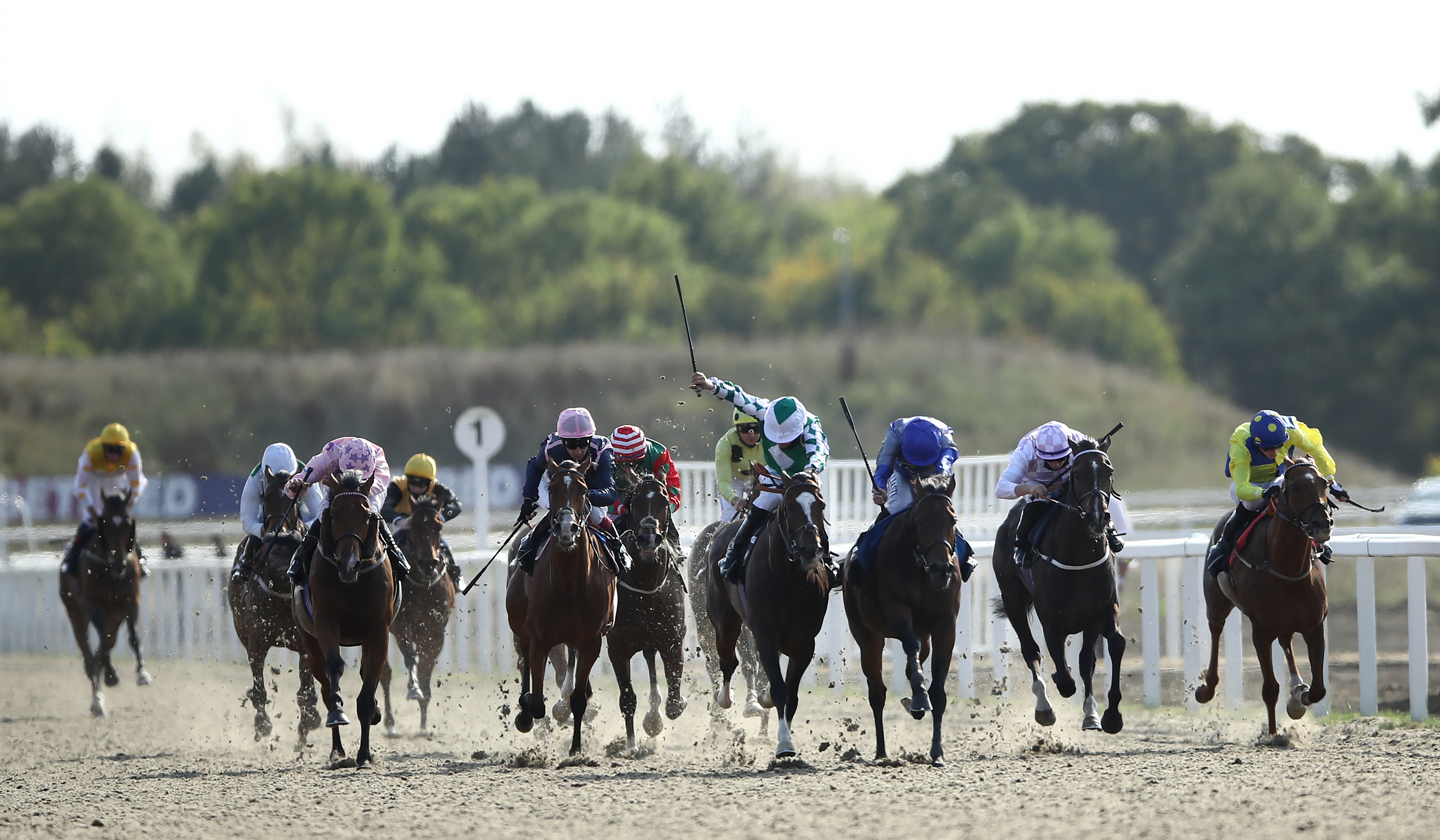 Global Art ridden by Ryan Moore (3rd right) coming home to win the tote.co.uk Free Streaming Every UK Race Handicap at Chelmsford City Racecourse.
