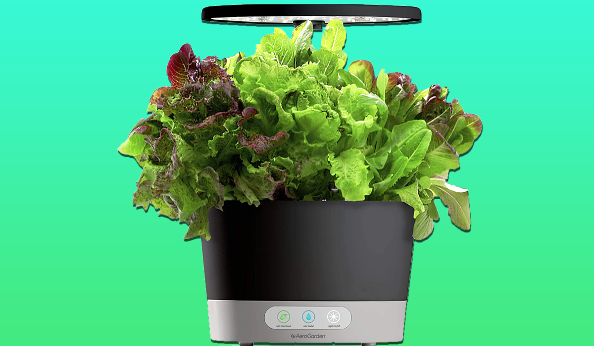Reviewers are digging this smart garden—and it's 43 percent off today only!: 'Herbs were sprouting in no thyme'