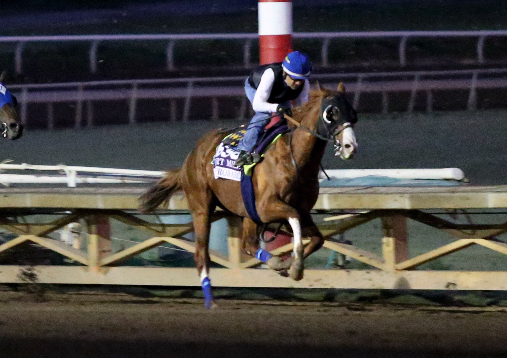 Breeders cup betting guide cpu only bitcoins price
