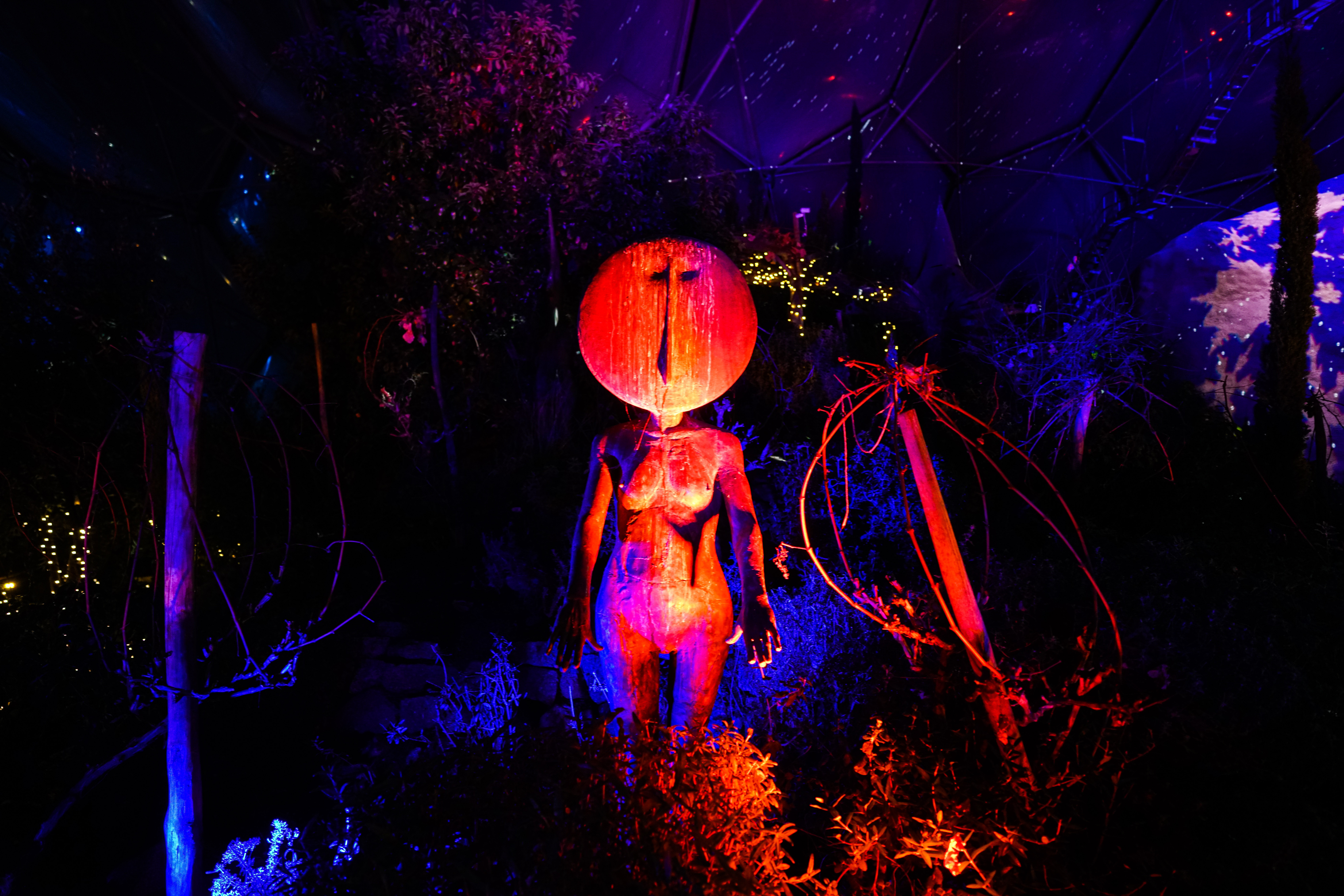 ST AUSTELL, ENGLAND - DECEMBER 03: A view of a display amongst the Christmas lights installation in the Mediterranean biome at the Eden Project on December 3, 2020 in St Austell, England. (Photo by Hugh Hastings/Getty Images)