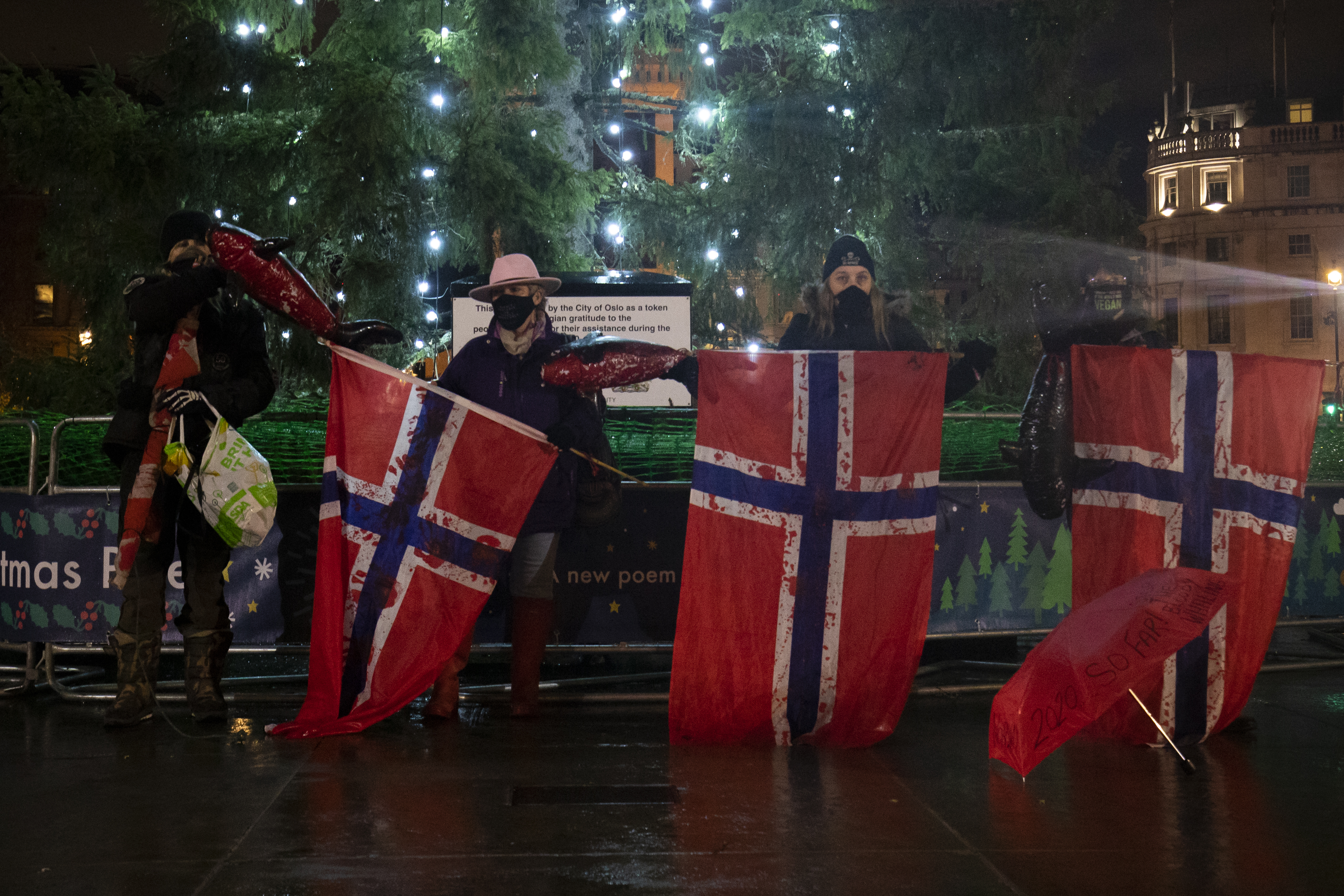 People protesting against Norway's whaling industry stand in front of the Christmas Tree in Trafalgar Square, London. The tree is an annual gift to Britain from Norway given as a symbol of friendship and co-operation between the two countries. (Photo by Aaron Chown/PA Images via Getty Images)