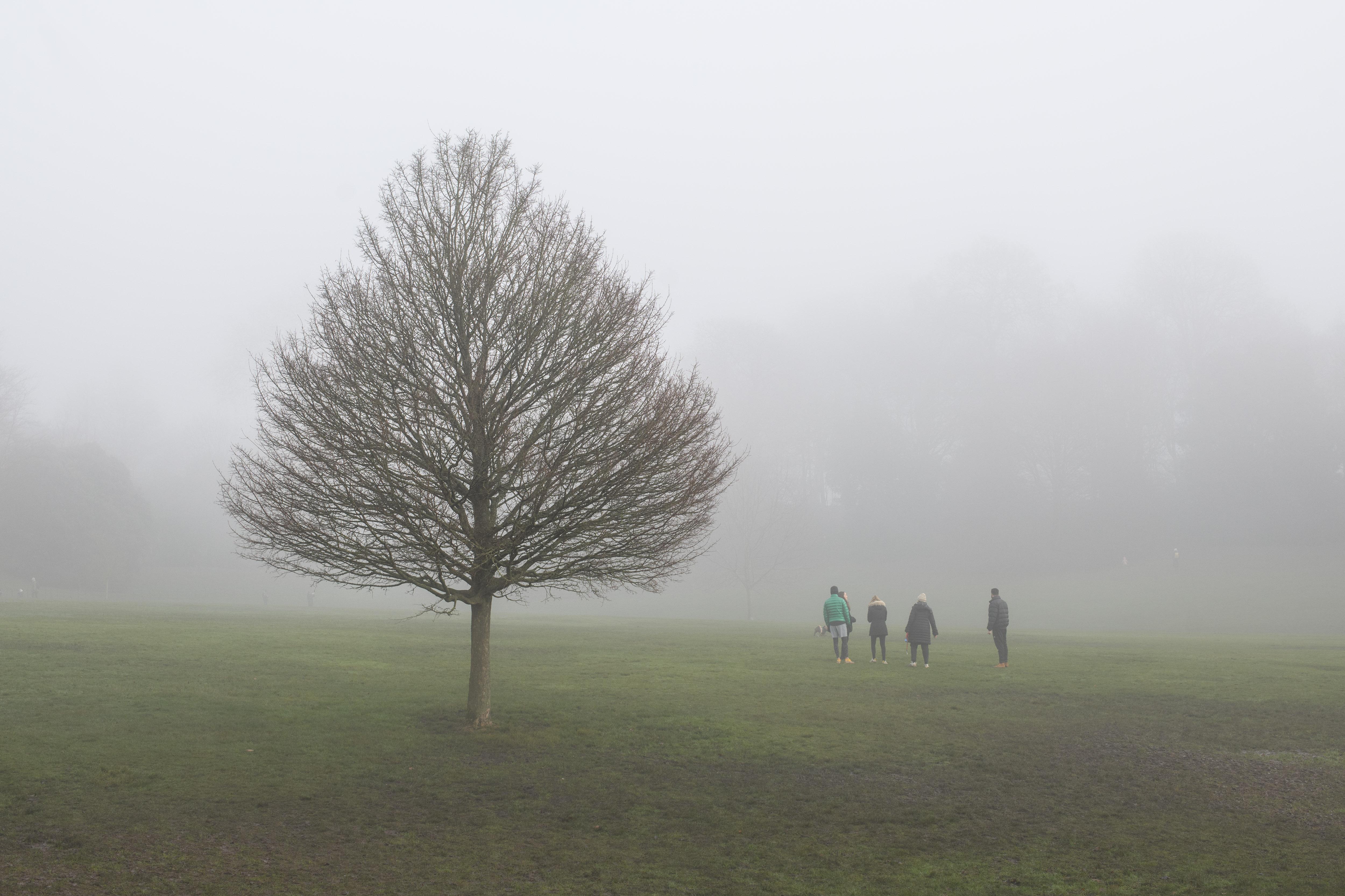 Foggy weather on Hampstead Heath in north London.  Picture date: Monday December 28, 2020. Photo credit should read:  Matt Crossick/Empics