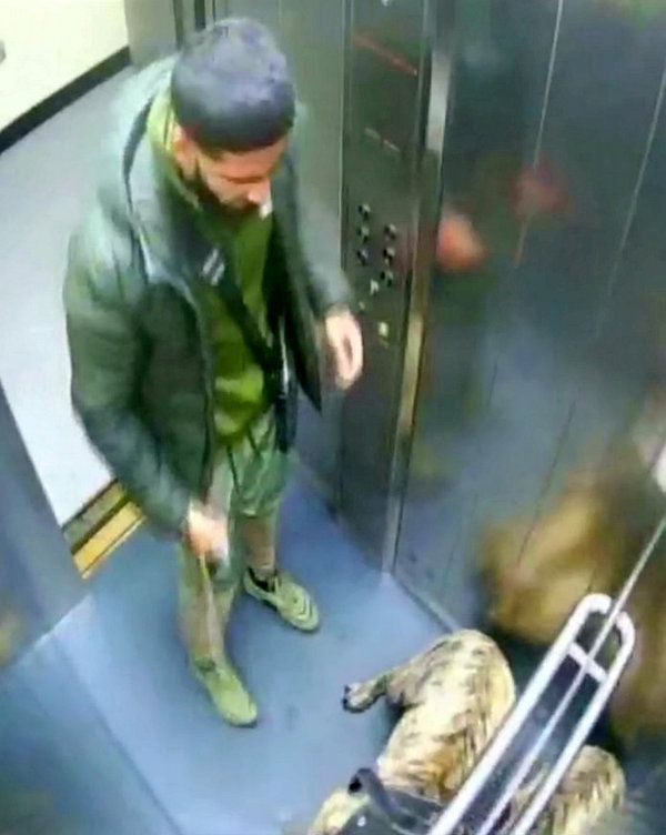 Shahzeeb Shazad Khan was caught on camera viciously kicking his eight-month-old puppy in the head (swns)