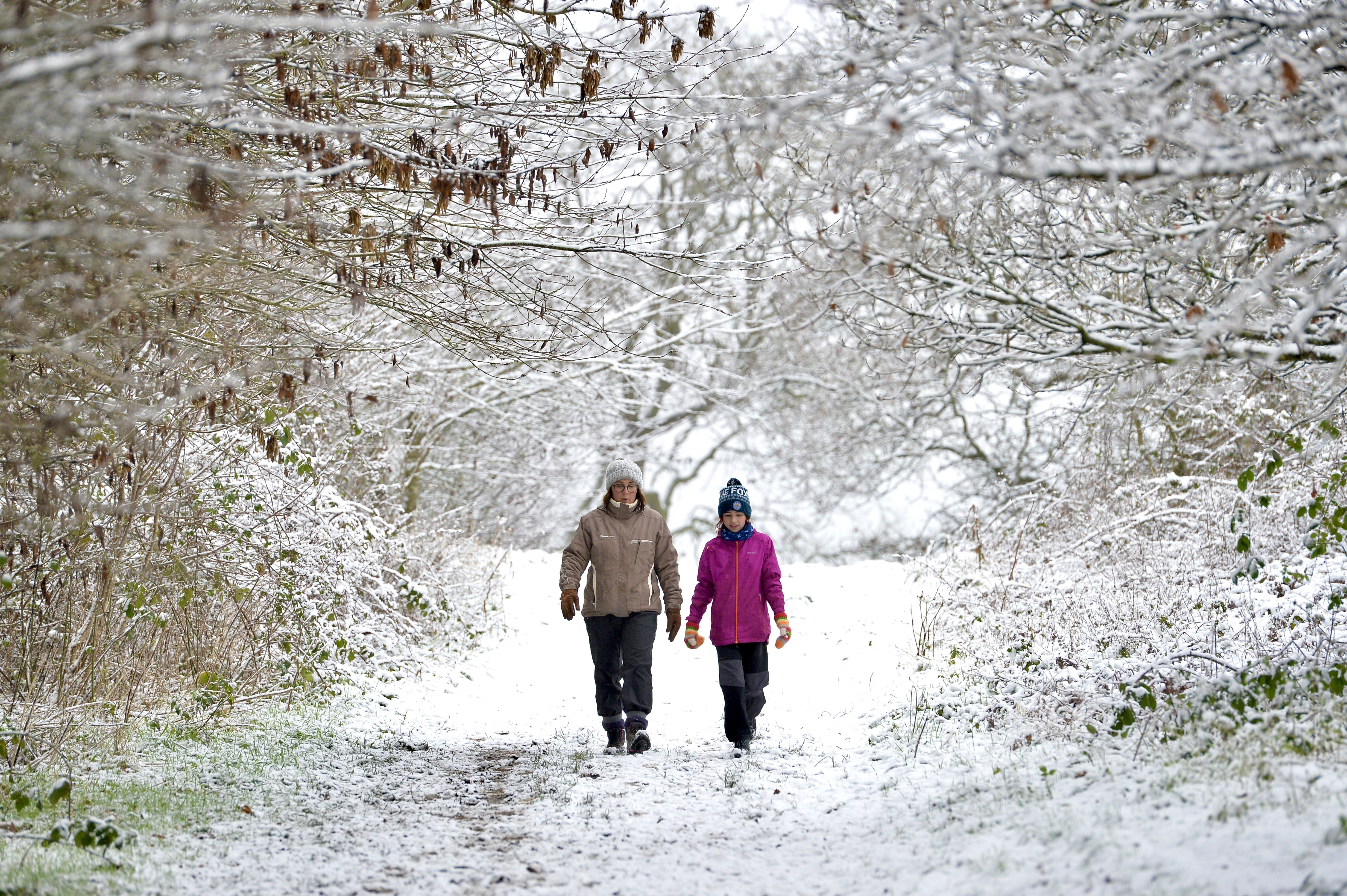 Leicester, Leicestershire, UK 29th Dec 2020. Uk Weather. Snow. Fun in the snow as Bradgate Park in Leicestershire is covered in a blanket of snow. Alex Hannam/Alamy Live News