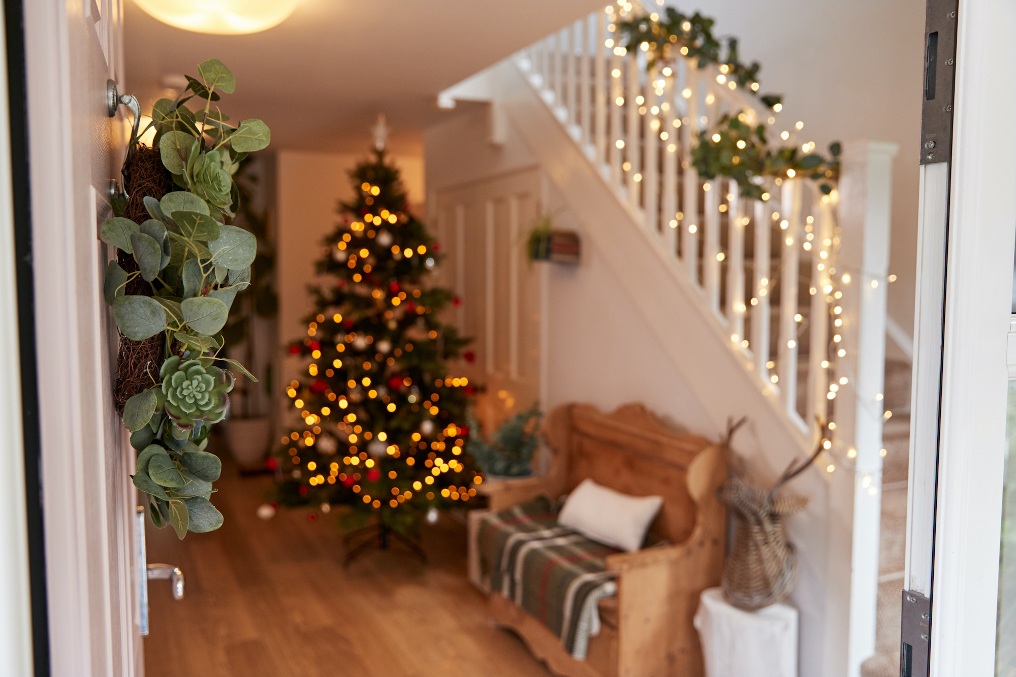 Where To Find The Best Deals On Christmas Decor Including Trees Download free christmas tree images. https autos yahoo com where best deals christmas decor 220814600 html