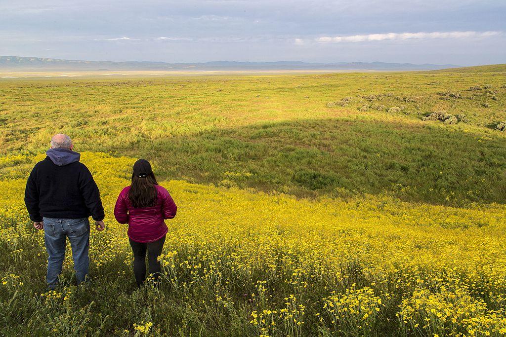卡里佐平原 (Photo by Bureau of Land Management California, Wikimedia Commons提供, 圖片來源www.flickr.com/photos/blmcalifornia/33743088970)