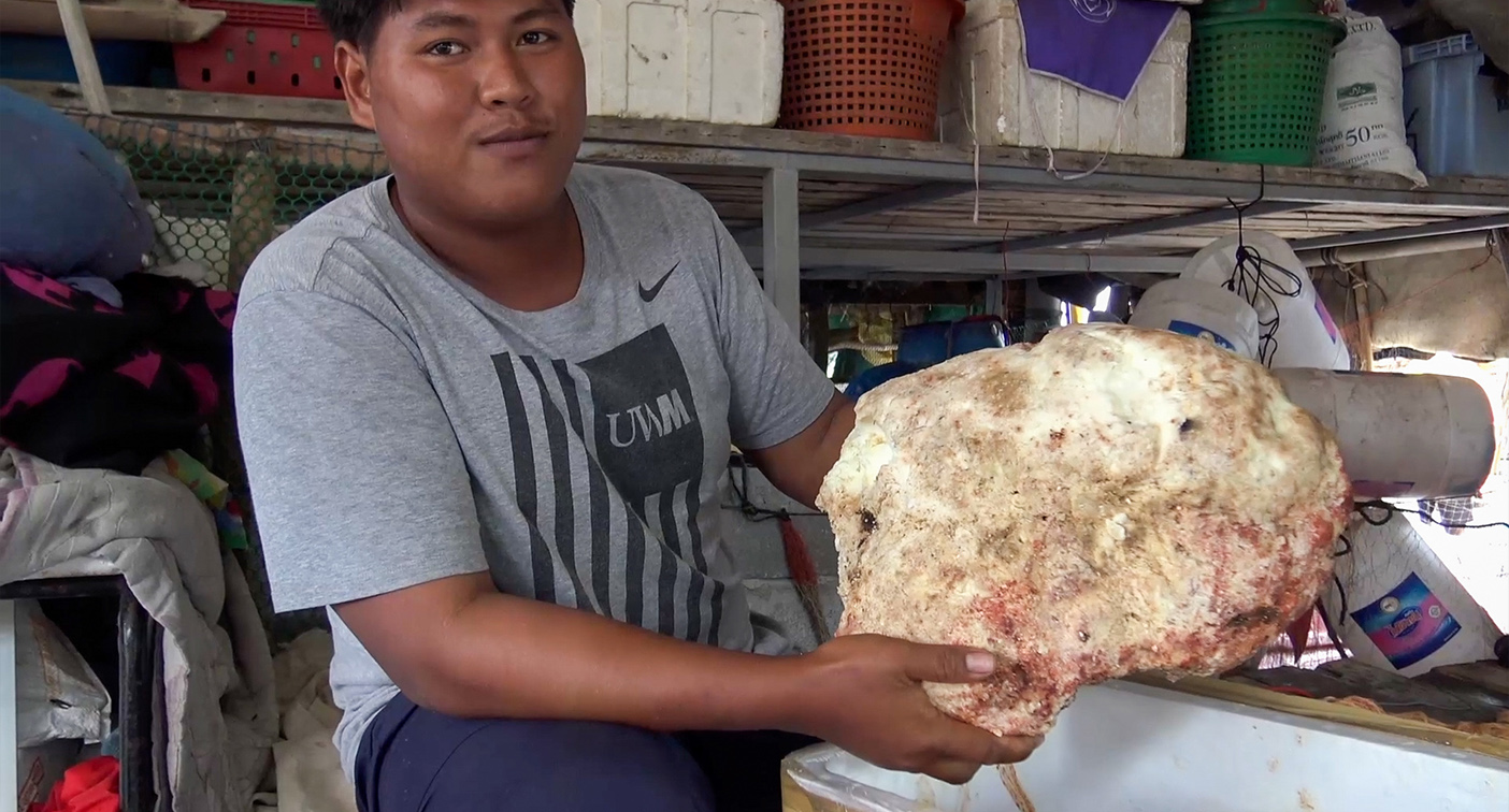 Young fisherman's 'lucky' $370k find after disappointing day