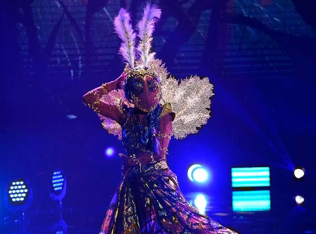 Metamorphosis: 'Masked Dancer' Moth revealed to be famous ...