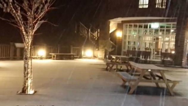 瑞雪兆豐年! 太平山莊睽違三年降雪