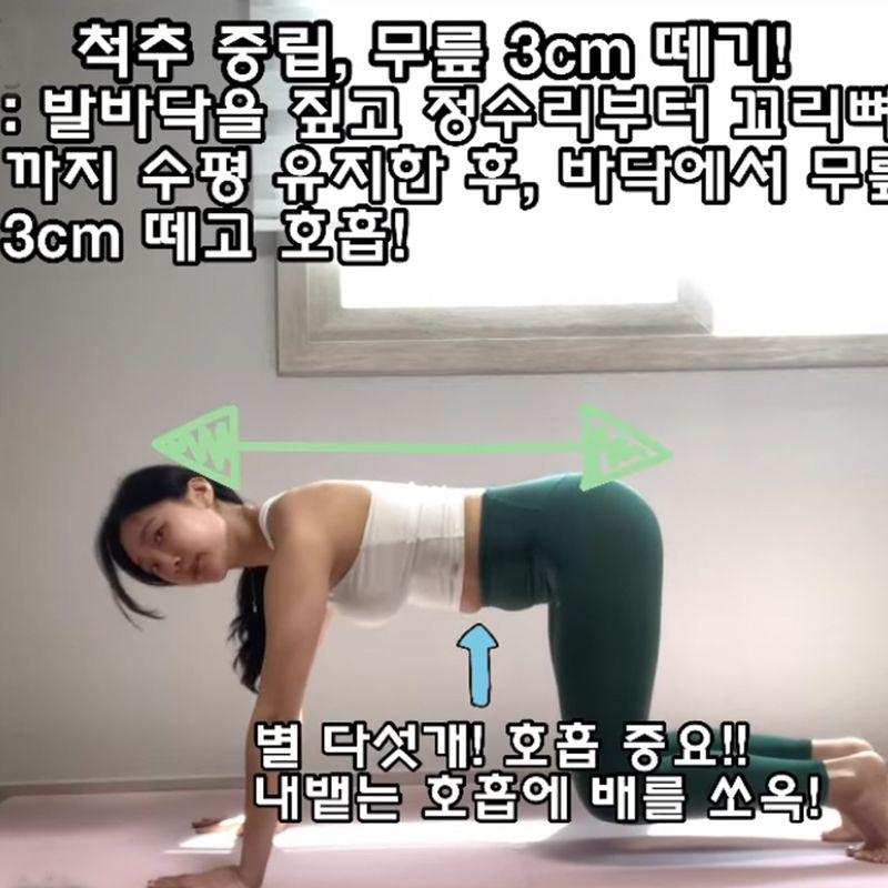 基礎棒式動作二:跪姿膝離地