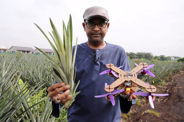 2020年12月12日,馬來西亞Putra大學教授Mohamed Thariq在馬來西亞Jenjarom舉行了菠蘿葉和部分用菠蘿莖製成的無人駕駛飛機。圖片攝於2020年12月12日。路透社/ Lim Huey Teng-RC2M1L9AX0A6