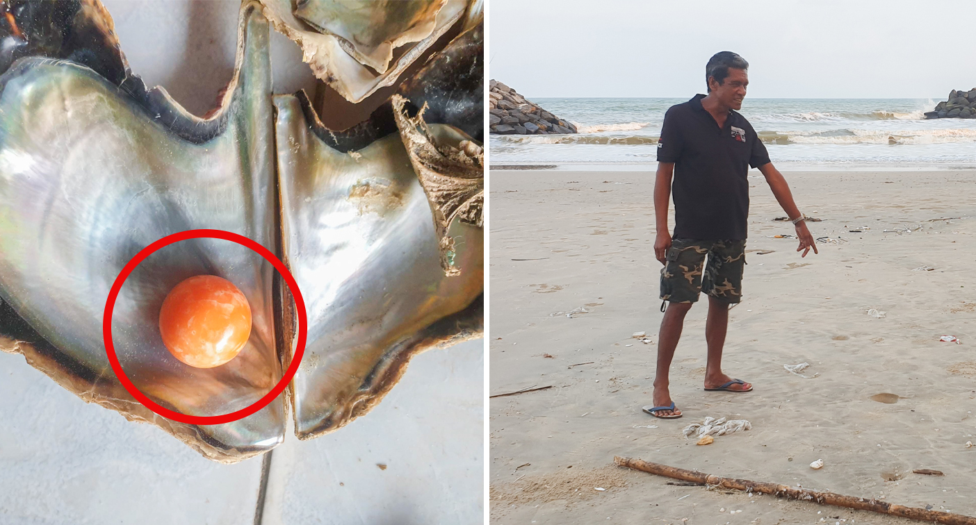 Struggling fisherman's unbelievable find in ordinary shell