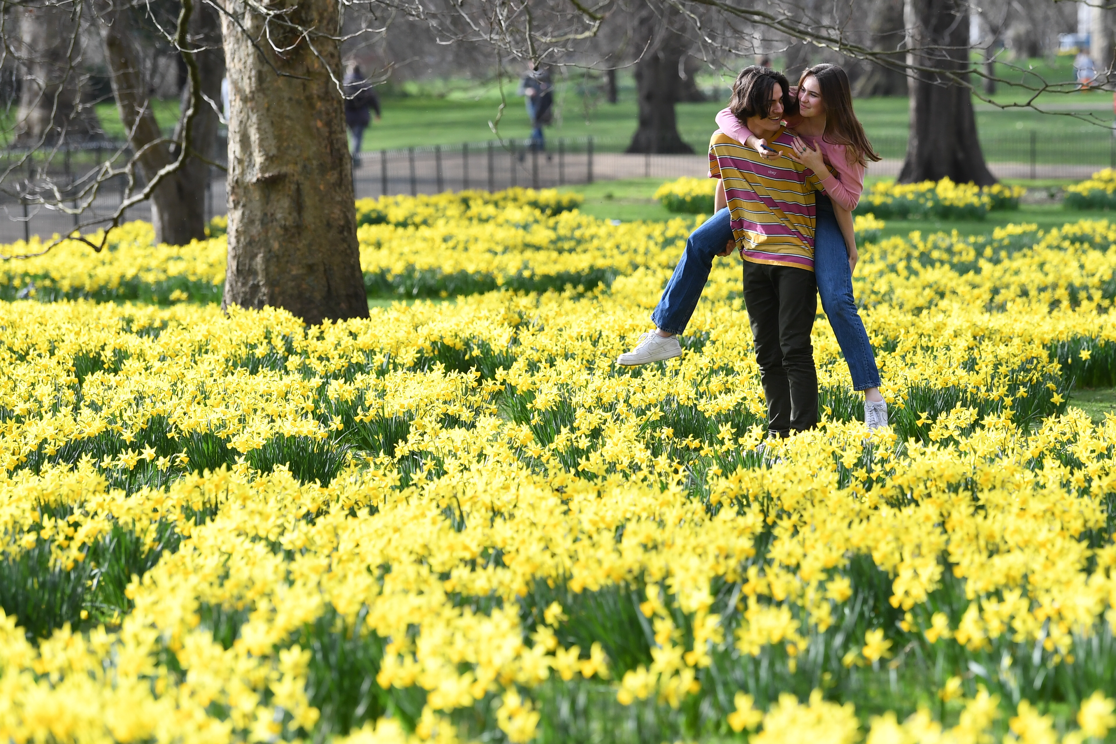 "<p>A couple amongst daffodils in St James's Park, London, with forecasters predicting ""the first signs of spring"" will be felt across much of the UK in the coming days. Picture date: Wednesday February 24, 2021.</p>"