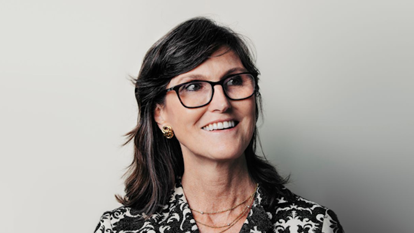 A typical day for Ark Invest's star stock picker Cathie Wood