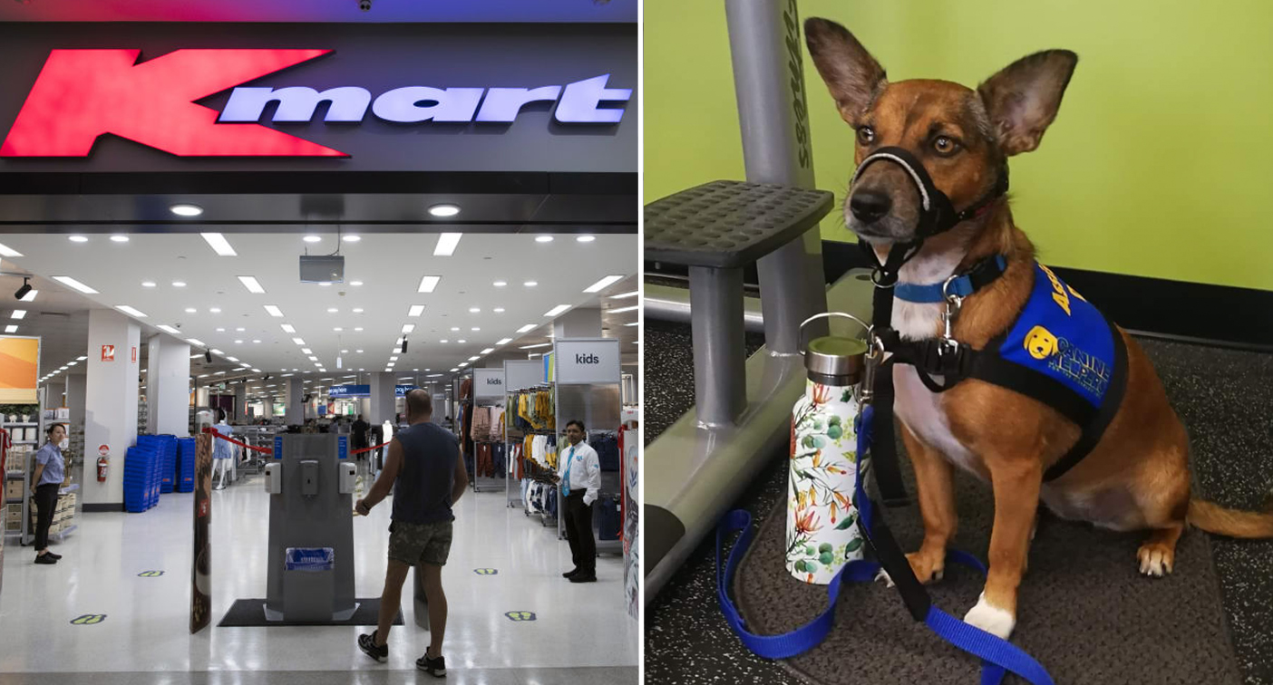 Woman's 'stressful' Kmart shop prompts warning about dog