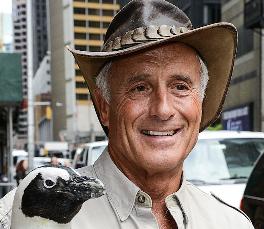 Animal expert Jack Hanna has dementia, 'no longer able to travel and work in the same way'